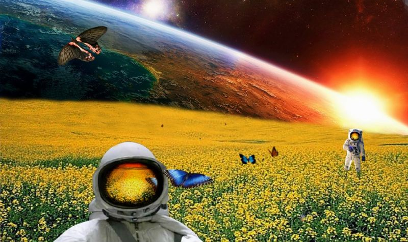 astronautsinafieldbykoleyjuddart.jpg