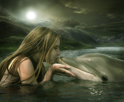 La communication chez les dauphins semble plus complexe que chez les humains