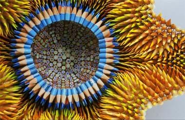 crayoncorail.jpg