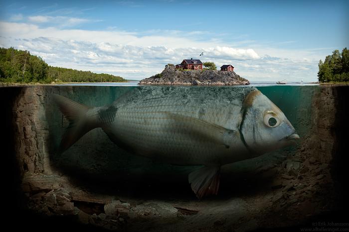 fishyislandbyalltelleringet.jpg